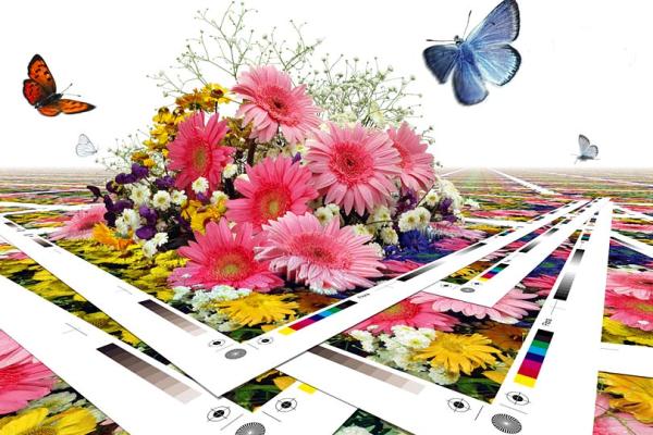 цифровая печать в Уфе